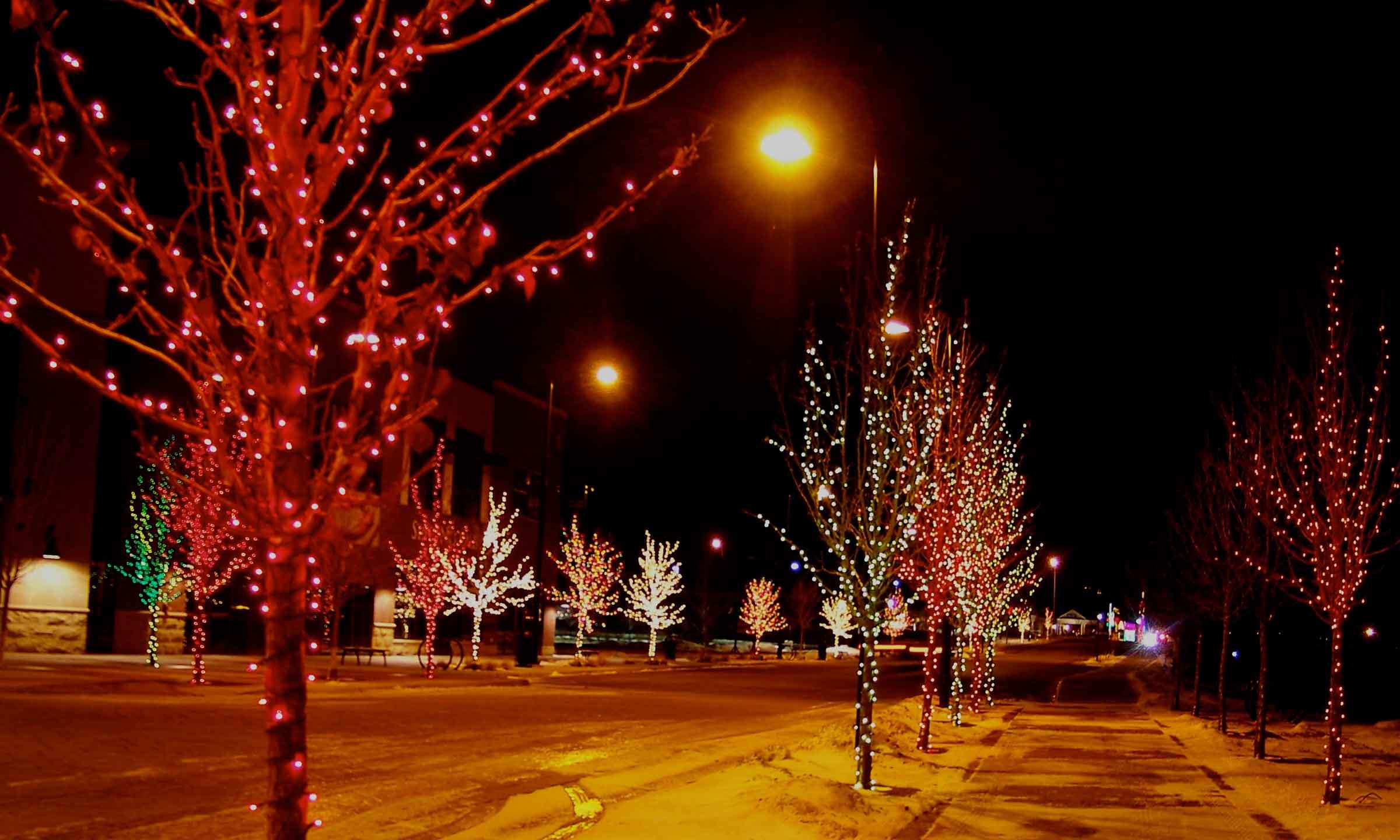 Wrapped Christmas Lights