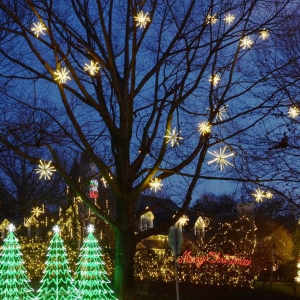Starbursts  Holiday Lights on Tree