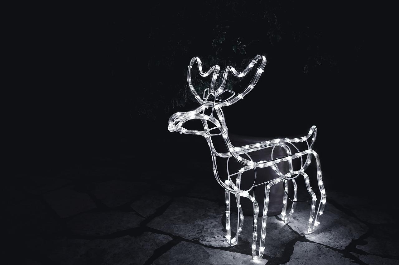 Reindeer holiday lights