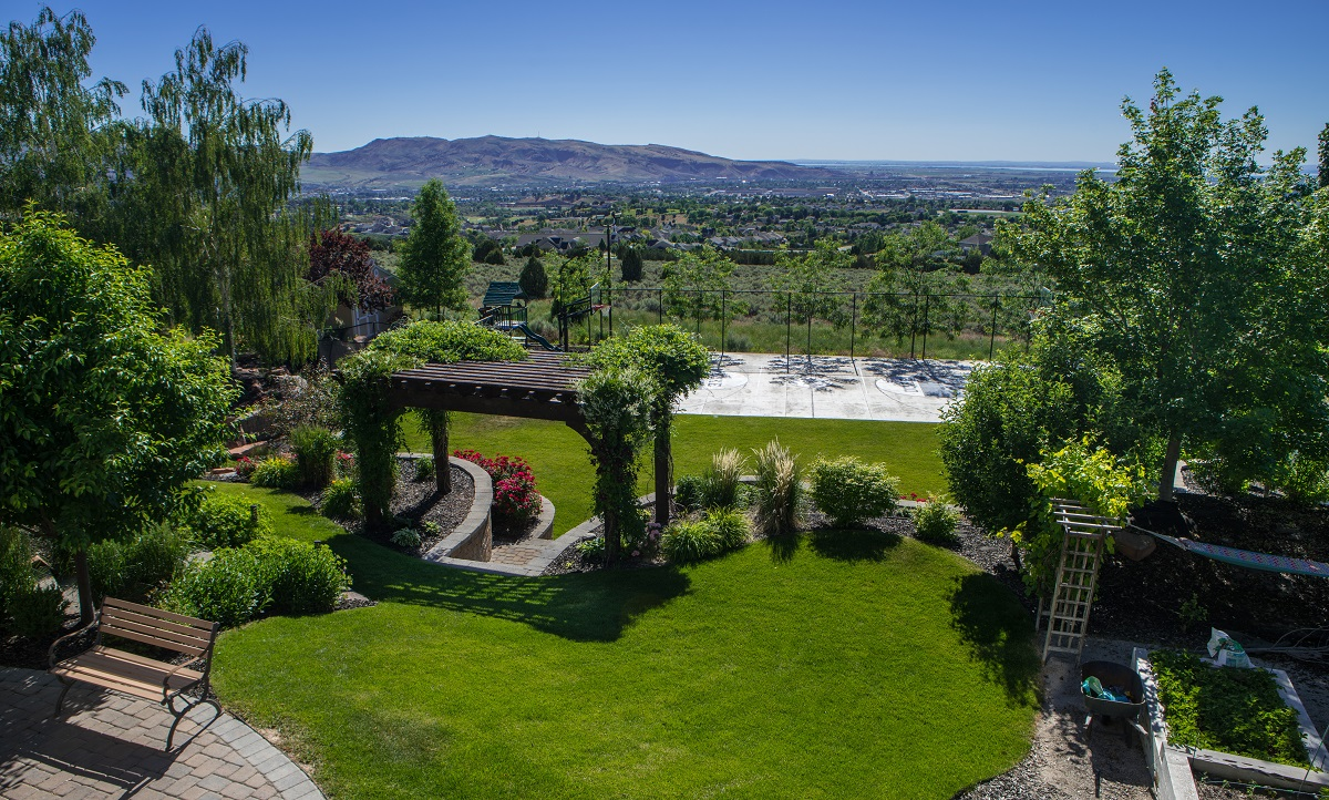 residential landscape focused on function and privacy