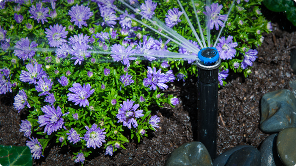 Best commercial rotator sprinkler head