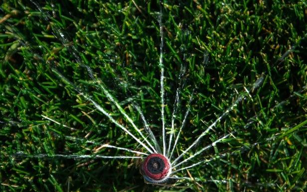 Irrigation system head