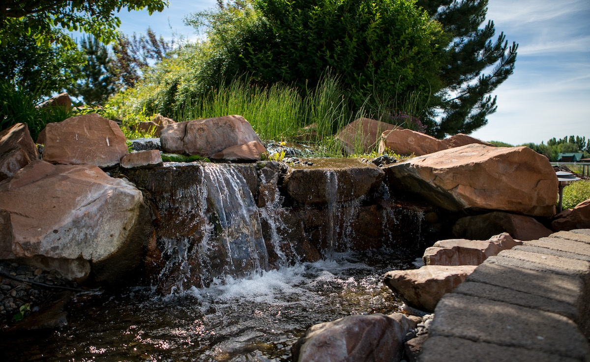 waterfall and pond water feature in backyard