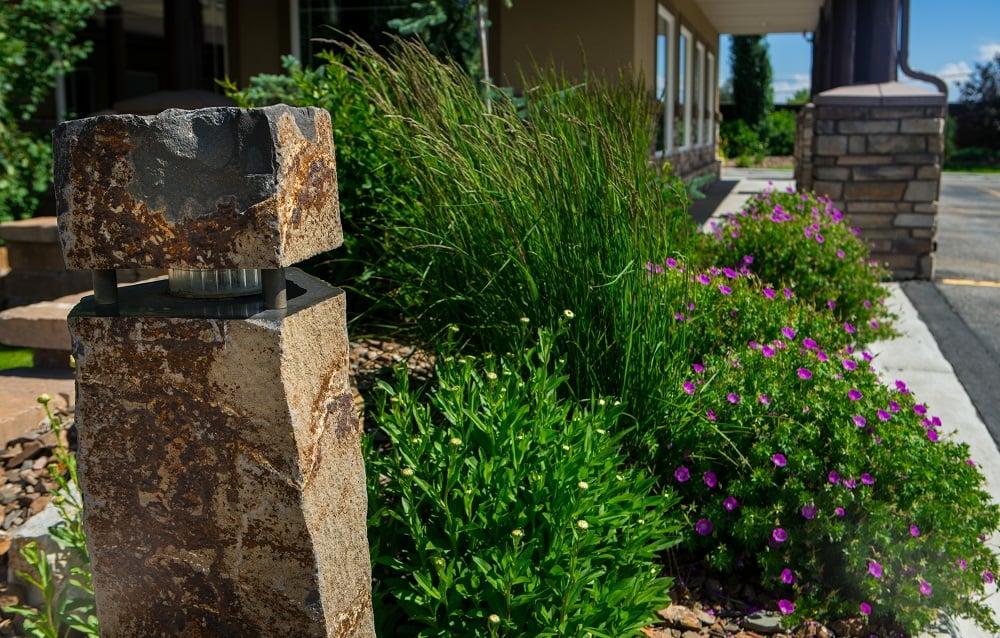 Healthy flower bed in Idaho Falls