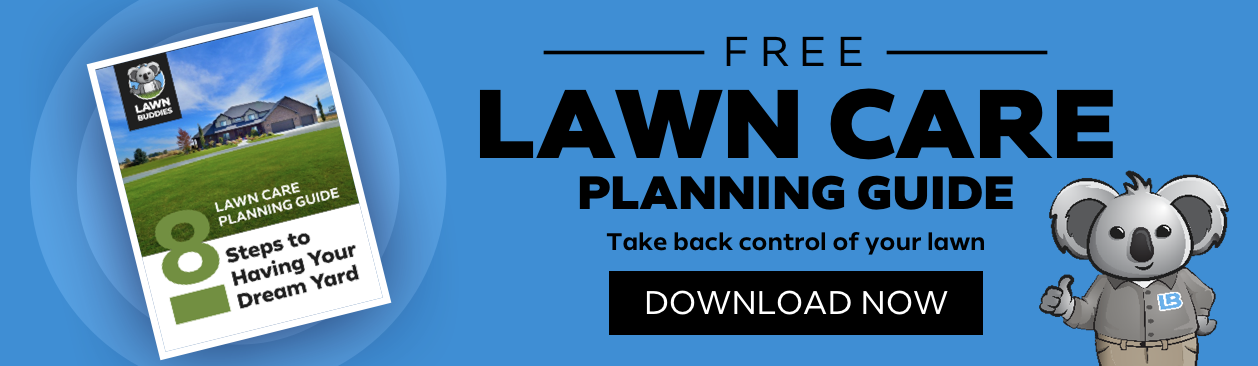 Click here to download the free planning guide